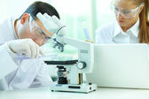 Laboratory experiment — Stock Photo