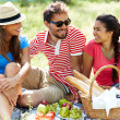 Friends on picnic — Stock Photo #31213039