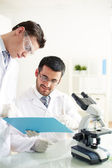 Discussion of experiment — Stock Photo