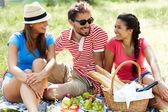 Freunde für Picknick — Stockfoto