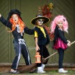 Stock Photo: Halloween girls on broom