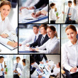 Business partners at work  — Foto Stock