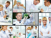 Laboratory study — Stock Photo