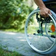 Wheelchair walk — Foto Stock