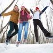 Happy friends jumping in winter — Stock Photo #36817685
