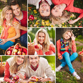 Young people with ripe apples — Stock Photo