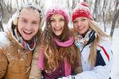 Amigos divirtiéndose en el parque de invierno — Foto de Stock