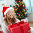 Christmas mood — Stock Photo #38916099