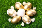 Easter ggs — Stock Photo