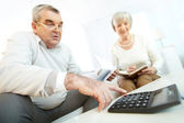 Mature people making financial revision — Stock Photo