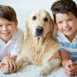 Boys with dog — Stock Photo