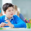 Schoolboy at lesson — Stock Photo #42525473