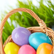 Colorful eggs — Stock Photo #42527217