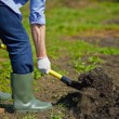 Farmer digging in the garden — Stock Photo #46339533