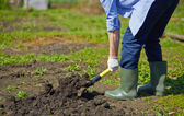 Farmer digging in the garden — Stock Photo