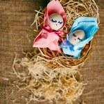 Newborn eggs — Stock Photo