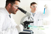 Clinicians studying chemical elements — Stock Photo