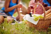 Picnic provision — Stock Photo