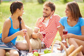 Friends talking and during on picnic — Foto Stock