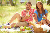 Dates having picnic — Stockfoto