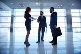 White collar workers interacting — Stock Photo