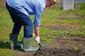 Farmer digging — Stock Photo