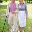 Seniors walk in park — Stock Photo #51631383
