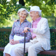 Seniors talking in park — Stock Photo #51631401