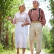 Seniors taking a walk in the park — Stock Photo #51631415