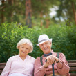 Seniors sitting on bench — Stock Photo #51631421