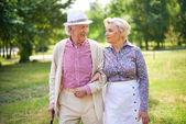 Seniors walk in park — Stock Photo