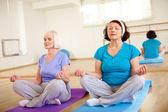 Aged females doing yoga exercise — Stock Photo