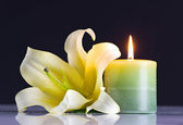 Ljus och blomma — Stockfoto