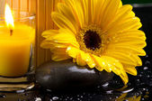 Spa still life with yellow, dark and water drop — Stock Photo
