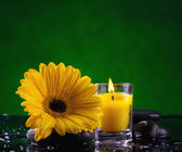 Spa still life with flower — Stock Photo