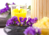 Aromatherapy still life — Stock Photo