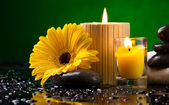 Spa still life with flower, candles and water drop — Stock Photo