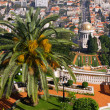 Bahai garden in Haifa - Stock Photo