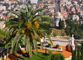 Haifa Bahai Garten — Stockfoto