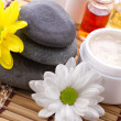 Stock Photo: Facial and body spa-cosmetics products