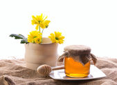 Country still with flowers and honey — Stock Photo