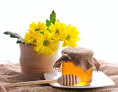 Rural still with honey and flowers — Stock Photo