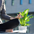 Meditating businesswoman and flower — Stock Photo
