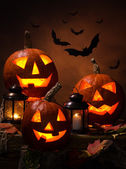 Halloween, pumpkins and bats — Stock Photo
