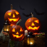 Pumpkins and vampire - bat — Stock Photo #32065781