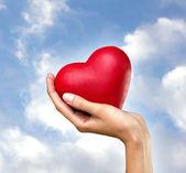 Heart in hand — Stock Photo