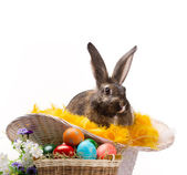 Easter still — Stock Photo