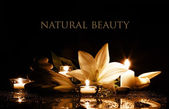 Spa beauty composition — Stockfoto