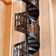 Tree spiral staircase — Stock Photo