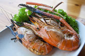 Shrimp grilled — Stock Photo